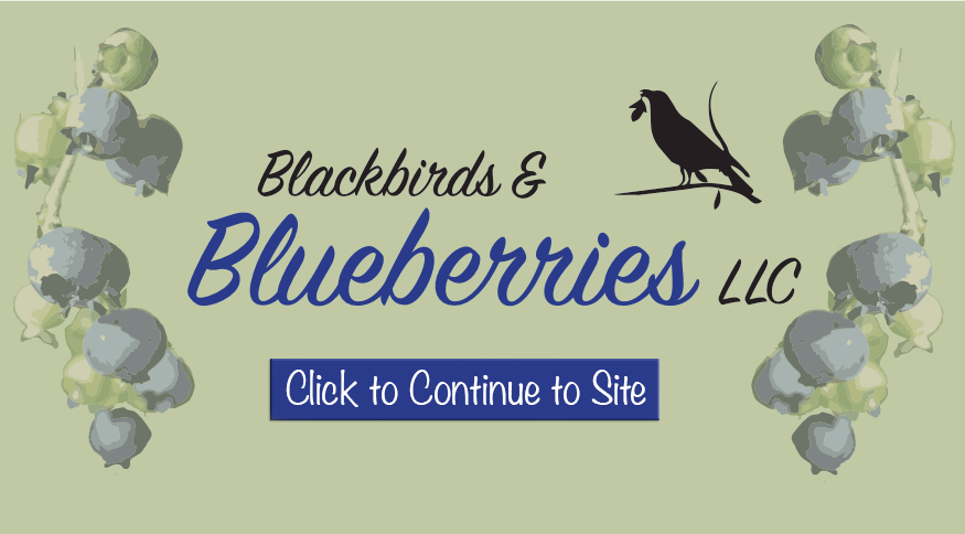 https://sites.google.com/view/blackbirdsandblueberries/home